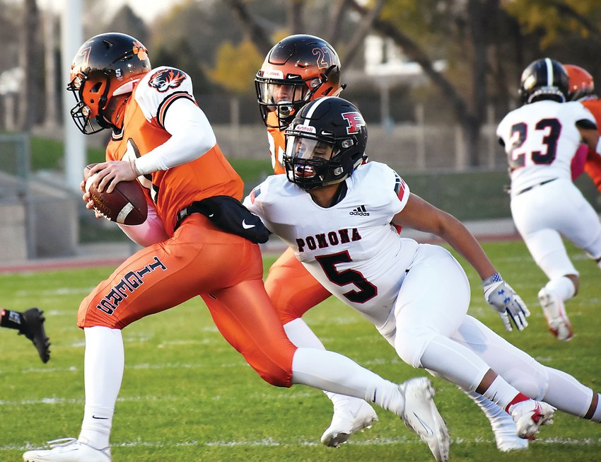 Pomona senior AJ Zamora (5) tries to bring down Lakewood quarterback Max Schadler during the first quarter Oct. 15 at Jeffco Stadium. The Panthers won 42-0 for the second straight shutout victory for Pomona through two weeks of the regular season.