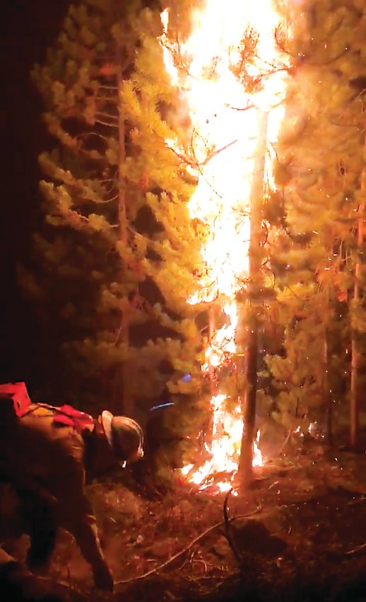 A South Metro firefighter cuts a fire line at the East Troublesome Fire near Grand Lake Oct. 24. The area received almost a foot of snow over the next two days, pausing advancement on the state's two largest wildfires in history, including the Cameron Peak Fire.