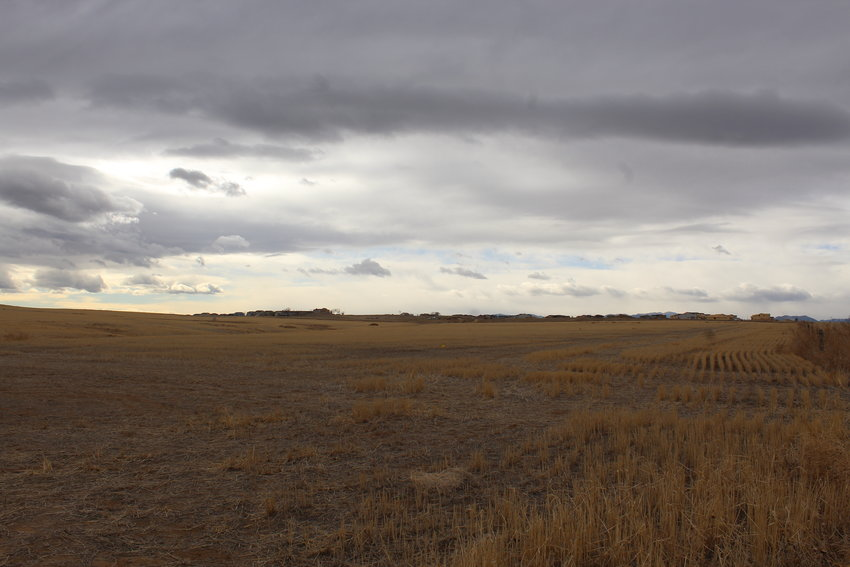 Part of the nearly 800-acre land that Hines, a developer, will build Parterre, a proposed development, on. It's located in northeast Thornton, just west of Todd Creek. Thornton City Council passed a major zoning amendment for the project at a Feb. 9 meeting.
