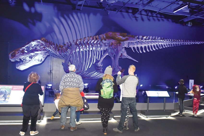 The T. rex Experience will be on display at the Denver Museum of Nature & Science, 2001 Colorado Blvd. in Denver, through April 25. Along with animations, touchable bronze casts of SUE's bones and a multimedia light show, the exhibit features an exact cast of SUE's 40-foot-long skeleton.