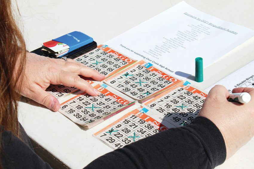 St. Mary's Carolyn Hohne manages several bingo cards during Saturday's fundraiser at the Frozen Fire Ice Rink at Golddigger Field.