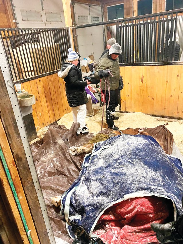 After shivering and struggling for more than six hours, the 20-year-old horse survived thanks to the work of the Dads of Castle Rock.