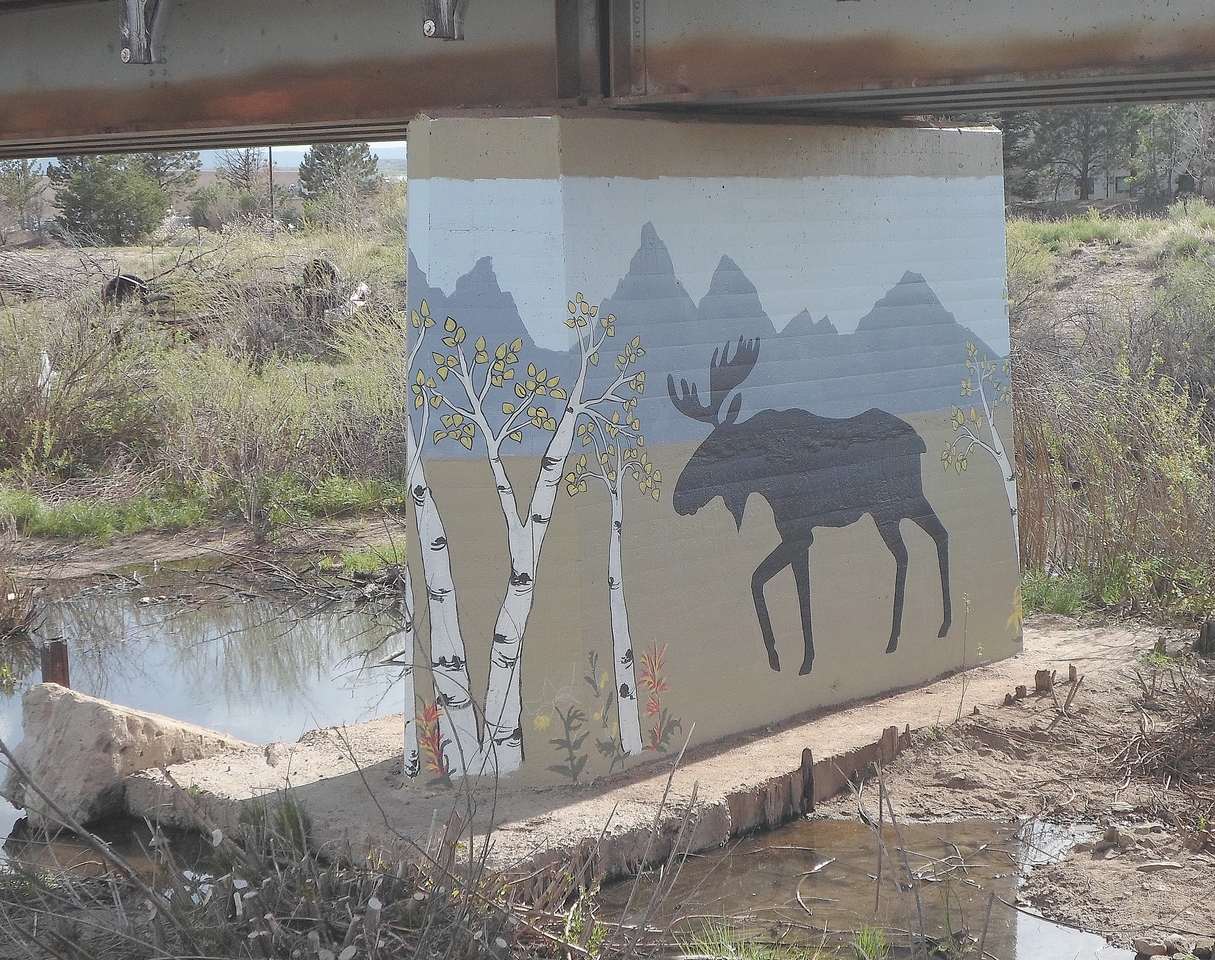 The underpass on the East Plum Creek Trail near the train tracks has been painted with a nature-themed mural. Local artists Janene DiRico-Cable, Kim McKie and Rosie Lonhert created the artwork.