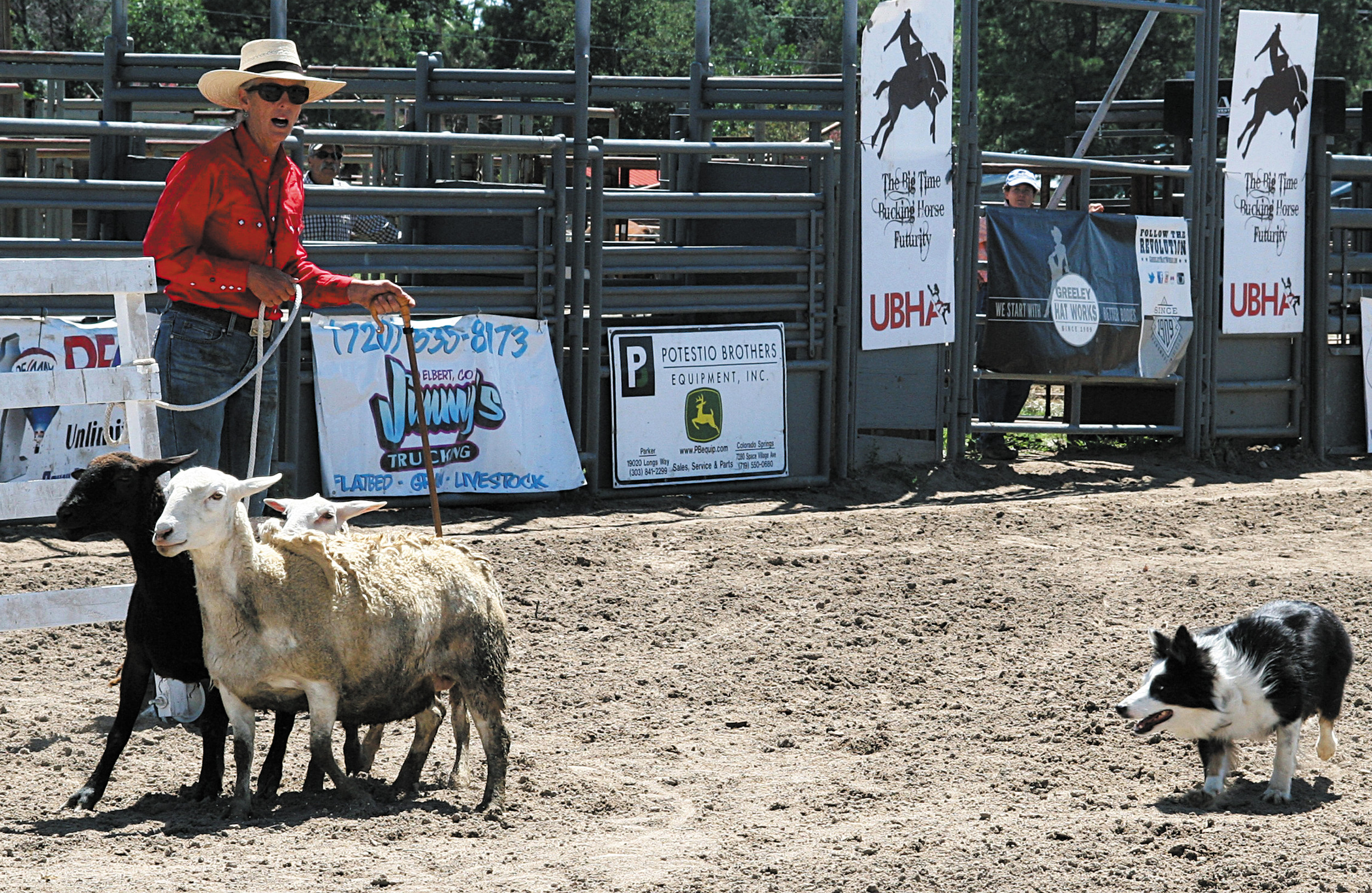 Mindy Bower and her dog Possum compete in the Open Stock Dog Trials at the Elbert County Fair on Aug. 2.