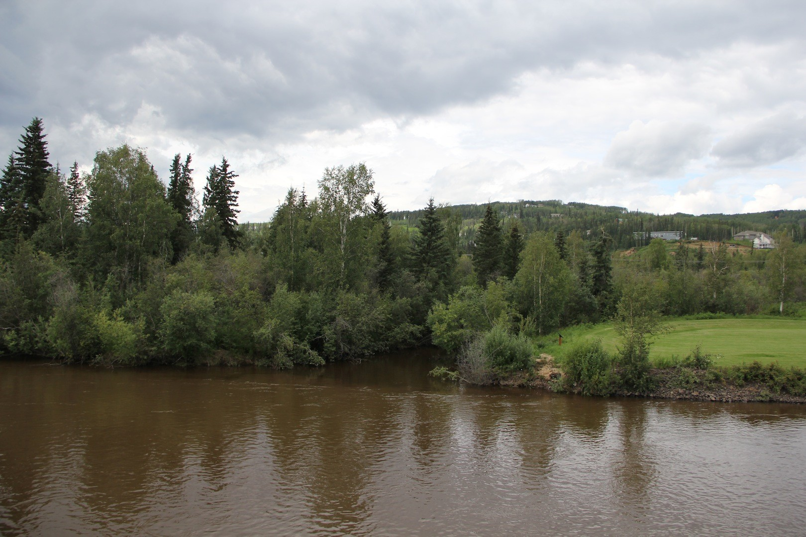 Cripple Creek as it feeds into the Chena River.
