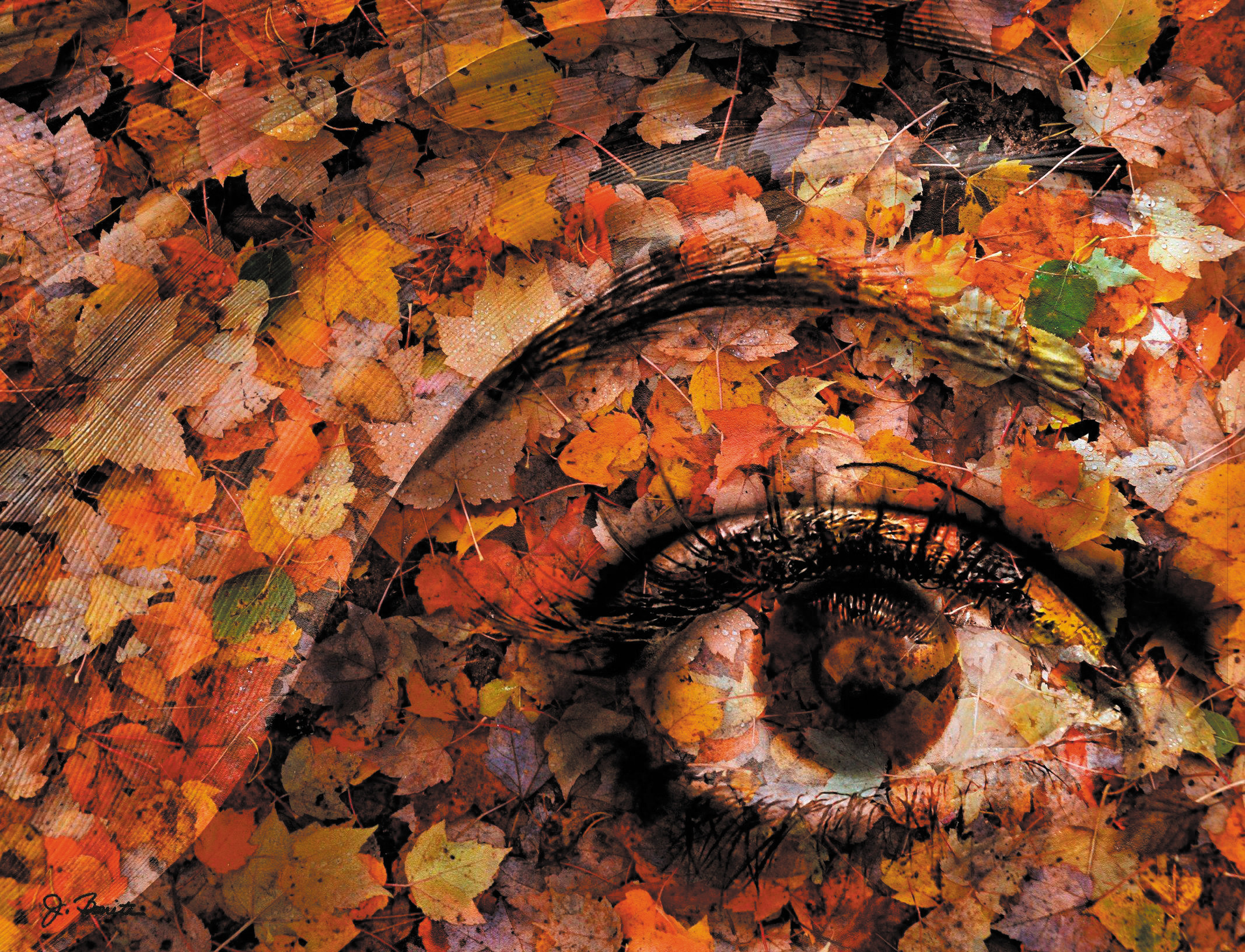 """Eye of Autumn"" by Joe Bonita is an example of his composite photographs. He will speak to the Englewood Camera Club on Sept. 9 about his processes."
