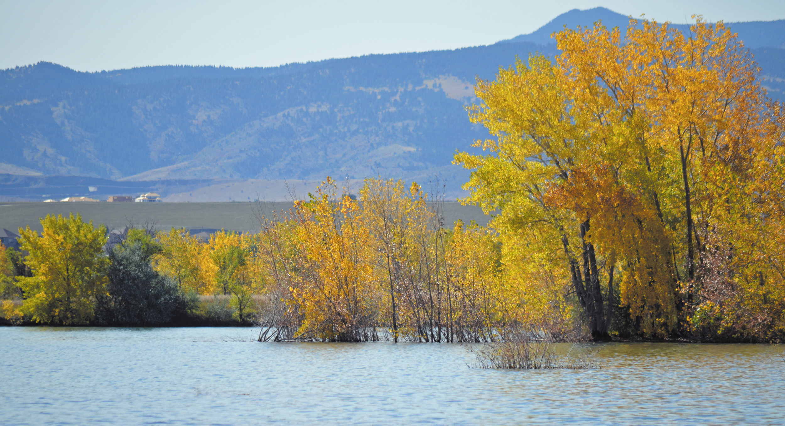 Standley lake glittering gold for Standley lake fishing
