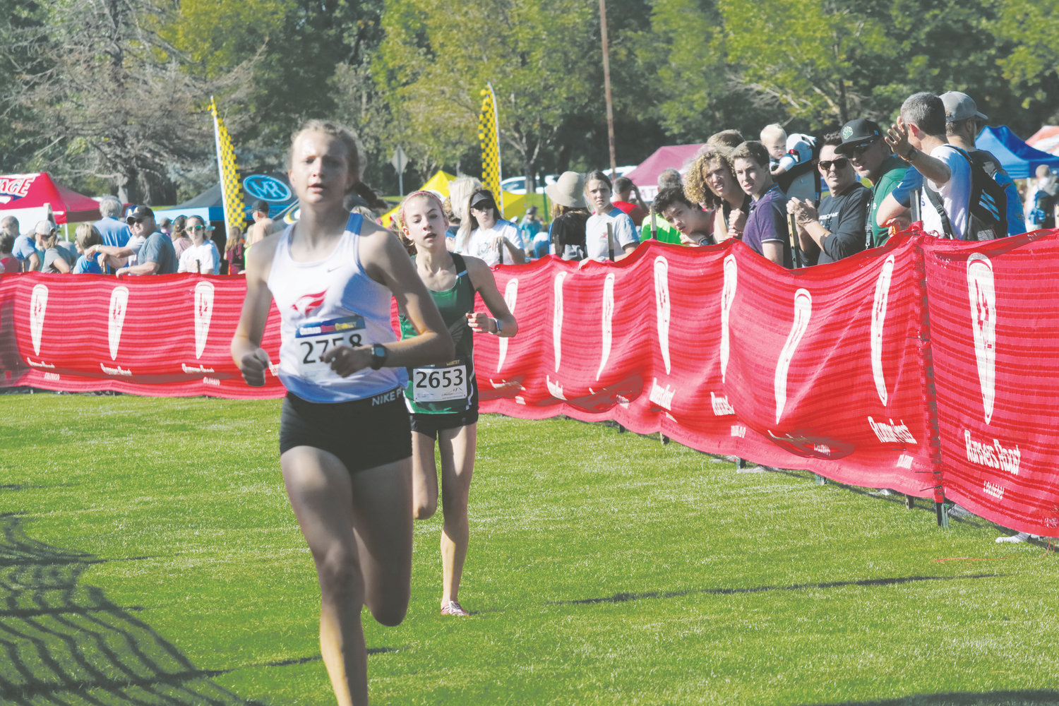 Ashten Loeks, 2558, heads for the finish line as the first Elizabeth runner in the field at the Sept. 21 Dave Sanders Memorial Cross Country Meet held at Clement Park. Loeks finished fourth and the Cardinal girls finished fifth in the team standings among the 26 teams running in Division 2.