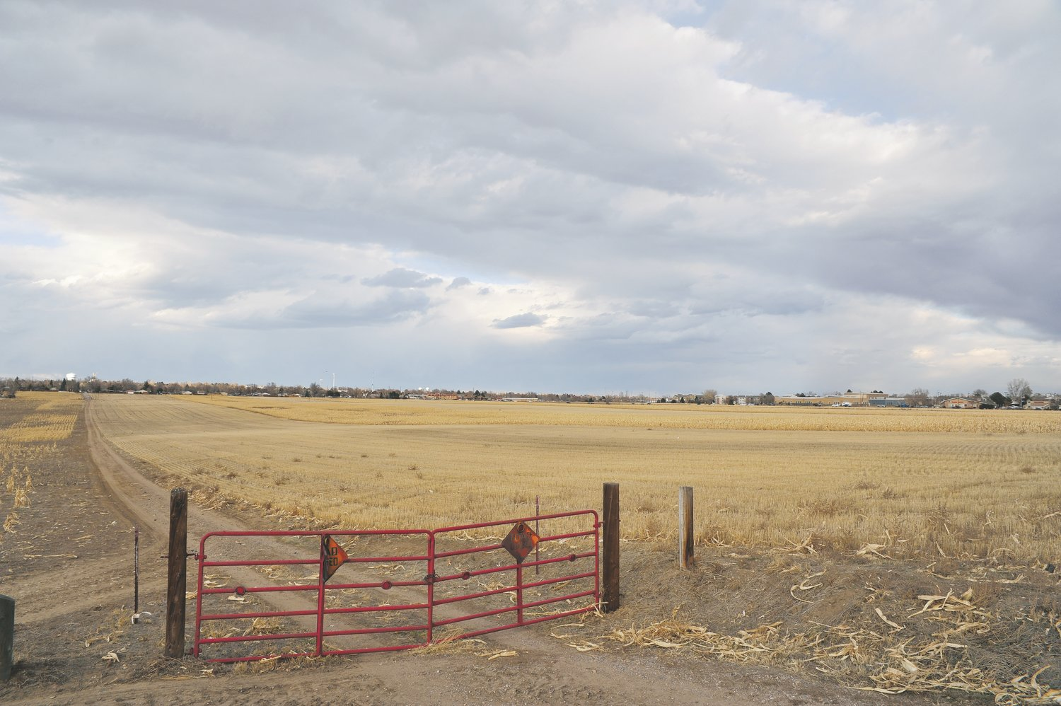 A view of the Pillar of Fire farm site in Westminster from Nov. 16. Numerous homes and retail shops have been proposed for this 236-acre parcel, located near Federal Blvd. and 84th Avenue.