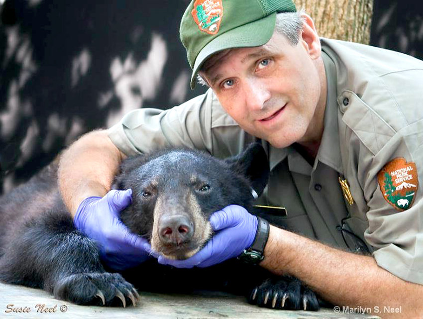 KIM DELOZIER is a retired bear biologist with Great Smoky Mountains National Park. Delozier will be serving as one of four different bear experts to answer questions and relate his experiences during the upcoming Black Bear Campfire Talk webinar.