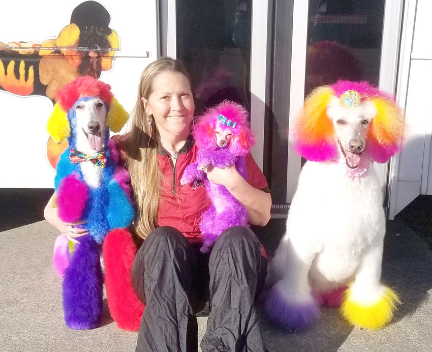 CINDY OLIVER poses with her multitude of multicolored dogs. She says normally, a white dog is the easiest to dye, which is partially why she has several white-haired poodles as her furry companions.