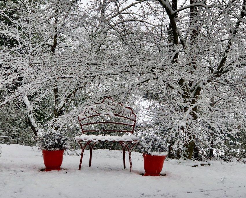 CHARLIE SCOGGINS shared this winter wonderland photo.