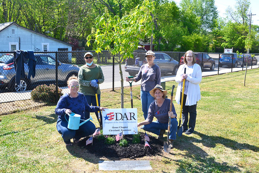MEMBERS OF THE OCOEE CHAPTER of the National Society Daughters of the American Revolution planted flowers around a tree at the Blythe Oldfield Park for Earth Day. They were accompanied by Keep Cleveland and Bradley County Beautiful representatives. From left are: Amanda Peels, Keep Cleveland and Bradley County Beautiful; Kay Cox, Keep Cleveland and Bradley County Beautiful; Joanne Swafford, Ocoee Chapter NSDAR First Vice Regent; Betsy Bassette, Ocoee Chapter NSDAR Second Vice Regent; and Leigh Ann Boyd, Ocoee Chapter NSDAR Regent.