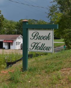 BROOK HOLLOW is a new subdivision located just off Peach Orchard Hill Road, and the new home located there is within short distances from shopping, dining and downtown Cleveland.
