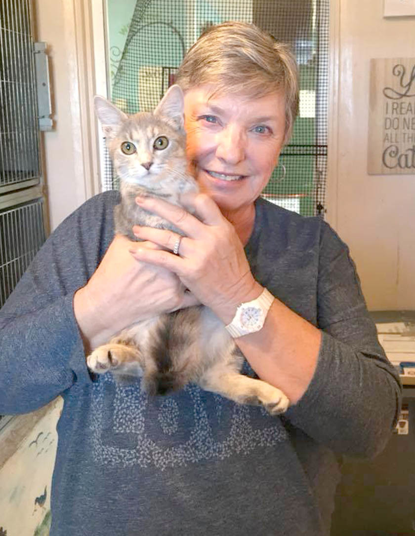 Whispurr came to the SPCA of Bradly 