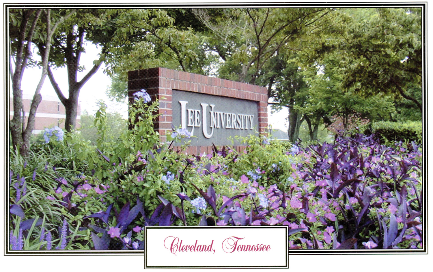 THIS PHOTO shows the signage of Lee University surrounded by flowers.