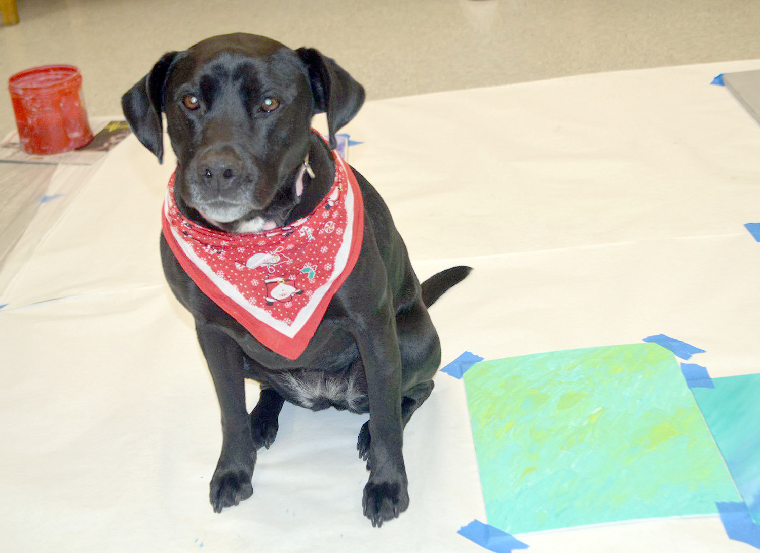 ADDIE stands near one of the canvases she will paint on as a fundraising project for Helping Paws Healing Hearts.