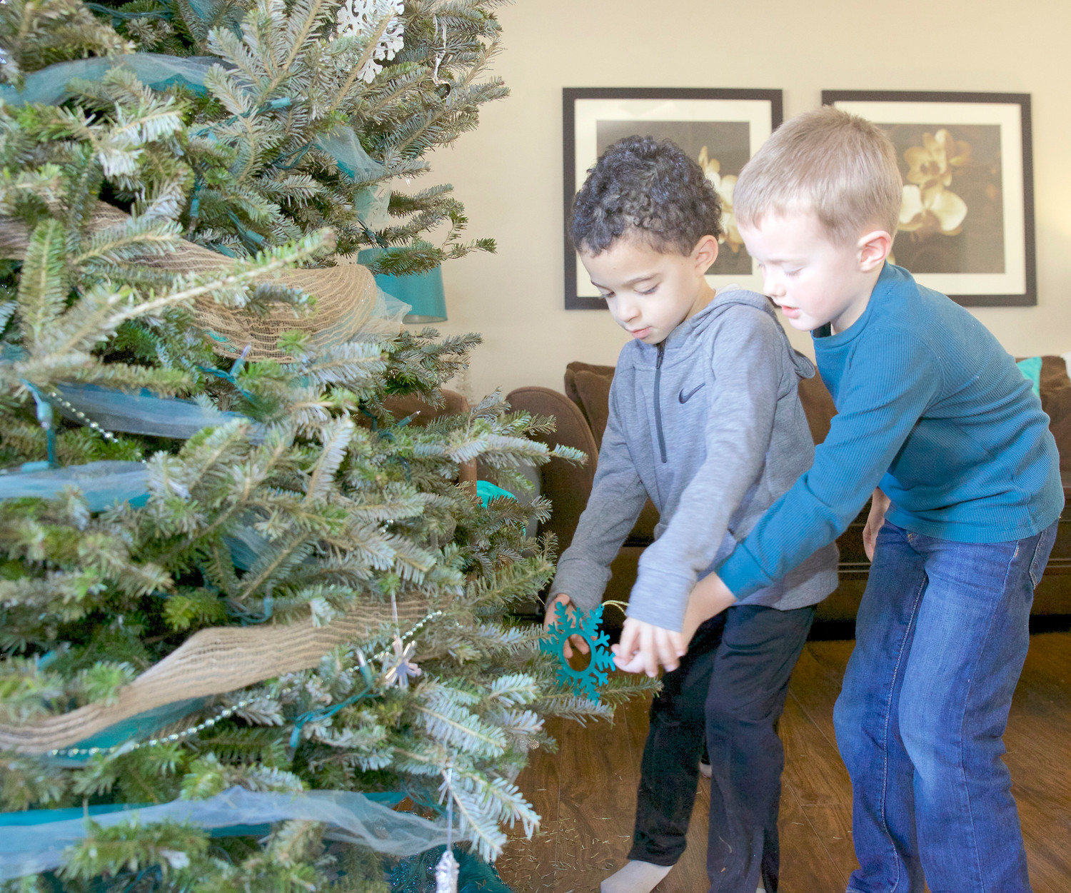 GABE PLUMMER, left, helps his good friend, Weston Baum, remove ornaments from the family Christmas tree. This evergreen, among many others throughout the Cleveland and Bradley County community, may be on its way to a collection site for the annual Chipping of the Green program. Live evergreens will be accepted through Saturday.