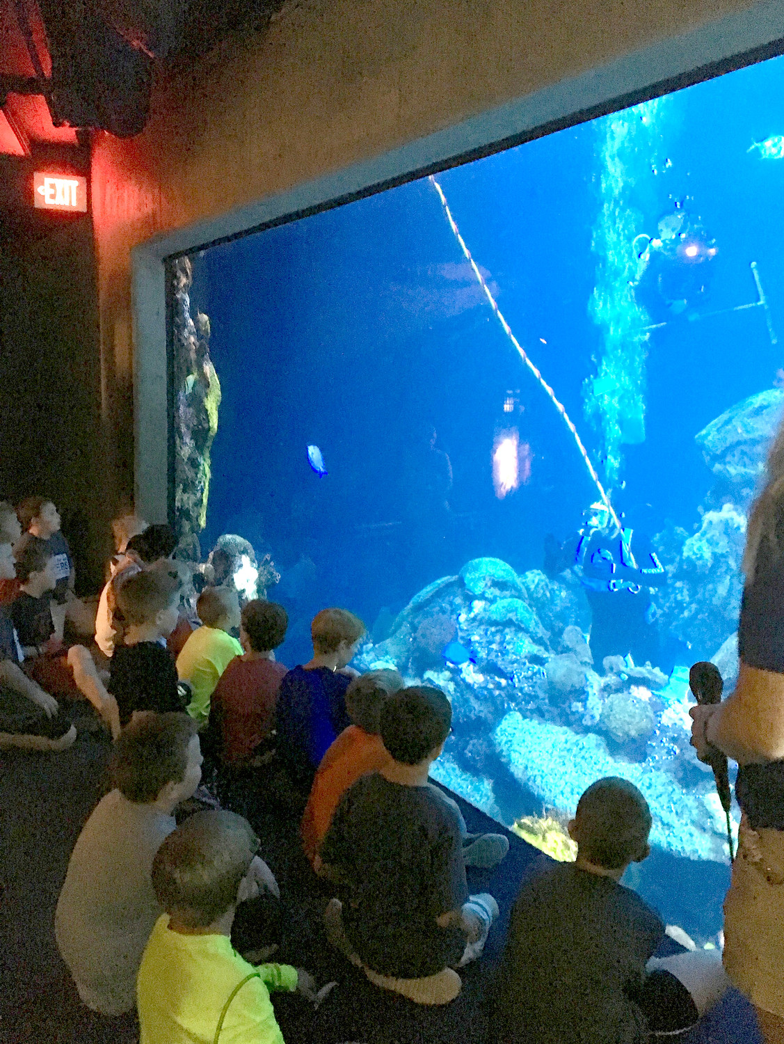 TAYLOR ELEMENTARY SCHOOL'S third- and fourth-grade students enjoy a Q-and-A with a scuba diver at the Tennessee Aquarium in Chattanooga. They discussed the animals' habits and food sources.