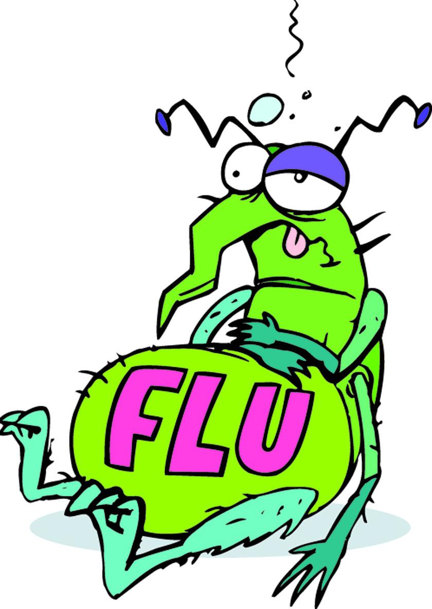 Image result for flu bug