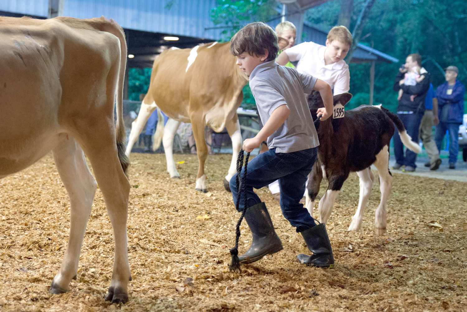 COME OUT AND SHOW community support for the Bradley Central High School and Walker Valley High School 4-H and FFA programs as they present their livestock show on Saturday, June 9, at 6 p.m.