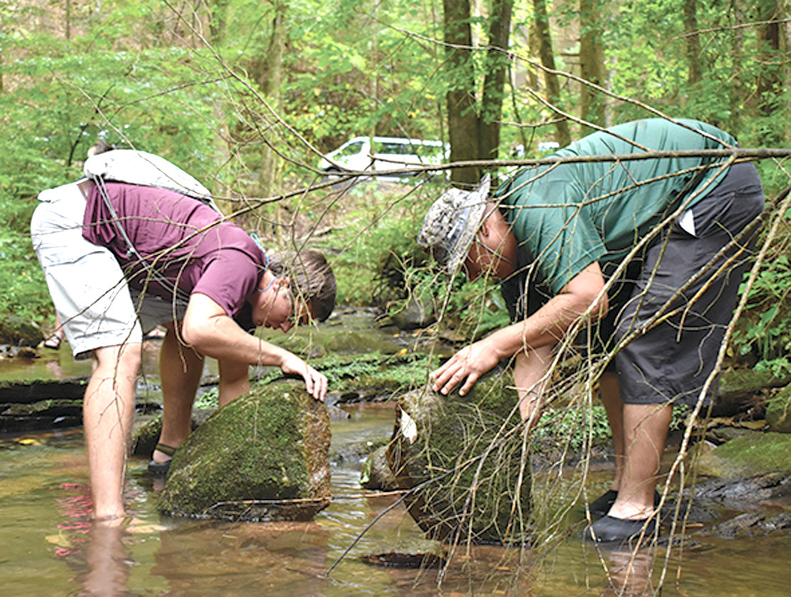 "Students ""creek"" during the SWAP visit on the Conasauga River."