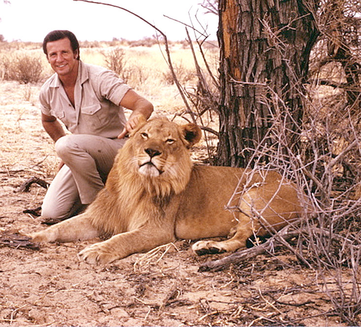 "STAN BROCK'S ROLE on the ""Wild Kingdom"" TV series in the mid-1980s, was to visit exotic and wild locations, with exotic and wild animals. Here, he poses with a wild lion in Nambia."