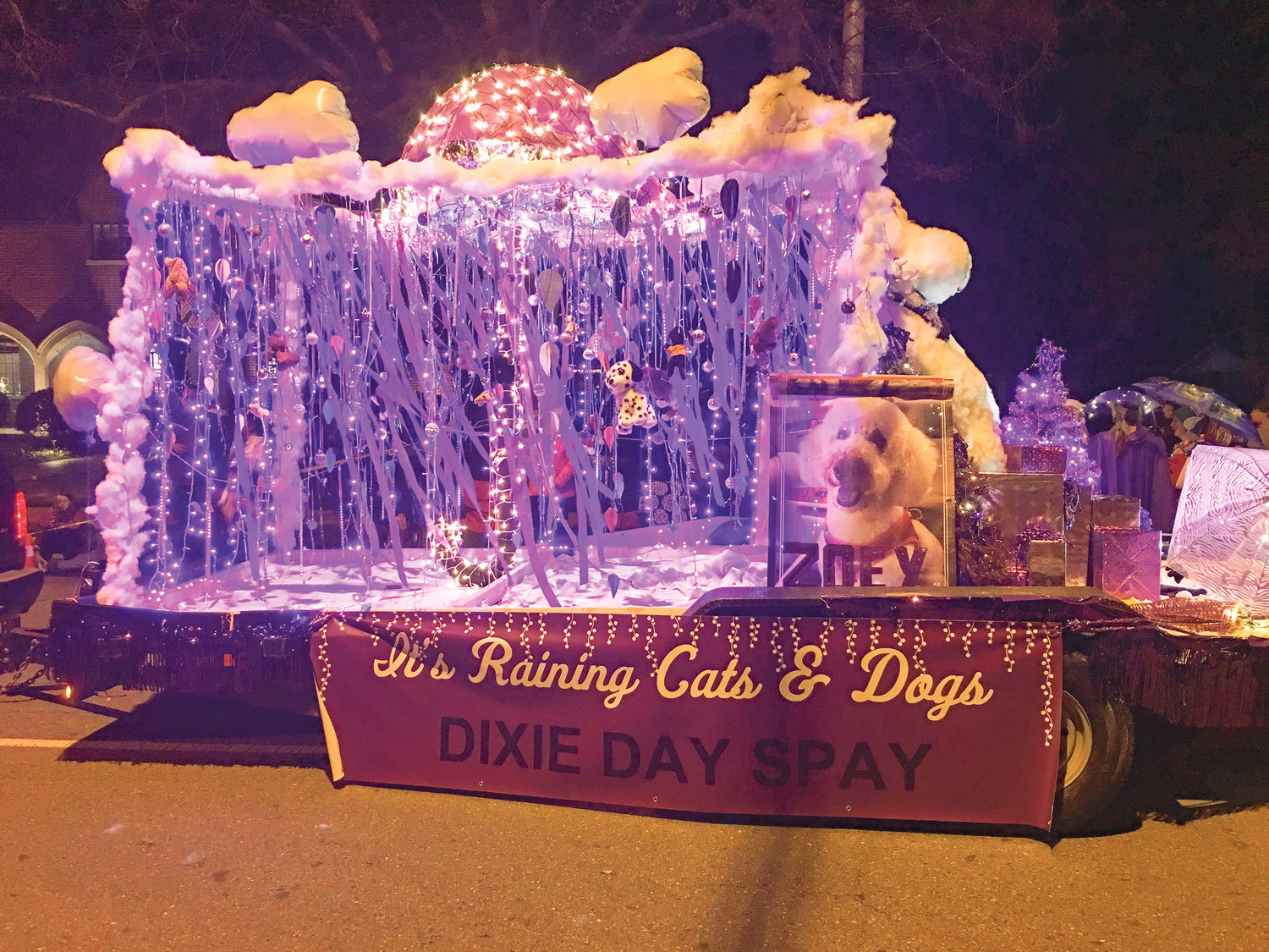 DIXIE DAY SPAY was the winner in the Civic Non-Profit category for the 2018 MainStreet Christmas Parade.
