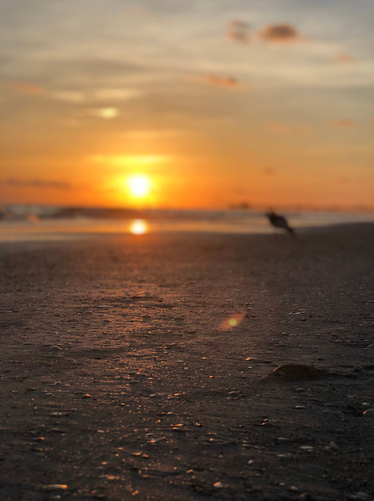 A beach sunset photo provided by Bryson Rapson.