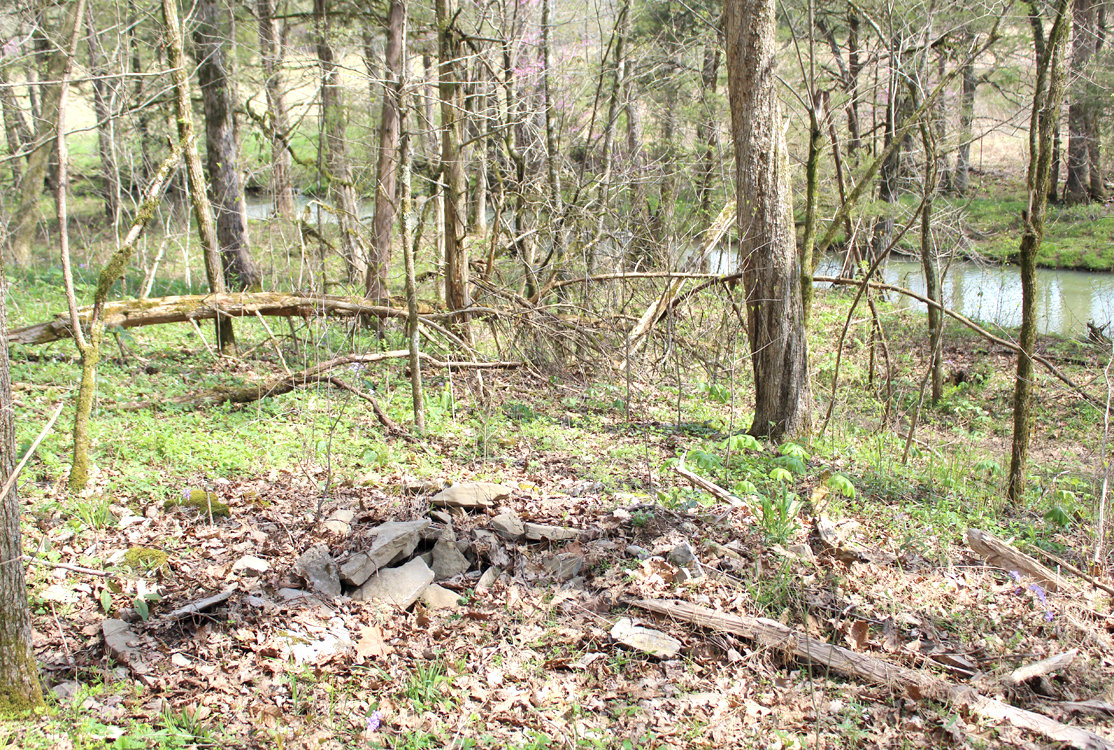 A PHOTOGRAPH of a third cairn was taken by a Cleveland Daily Banner reporter last month during a tour of Greg A. Vital's property last month in Meigs County.
