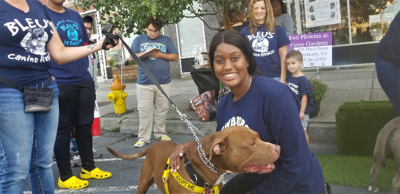 Alana Harris poses with Dodger, a pit-bull currently up for adoption with Bleu's Canine Rescue.