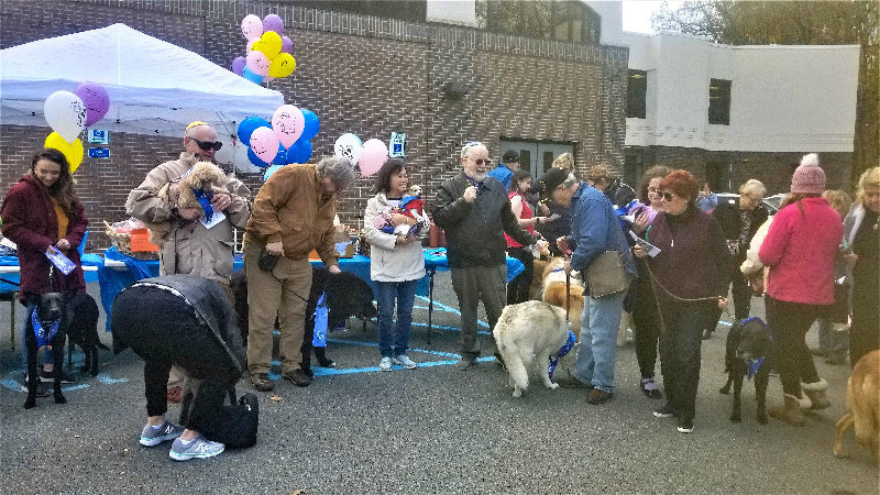Dogs of all shapes and sizes were welcomed last year to the first annual Bark Mitzvah at Congregation Agudas Israel.