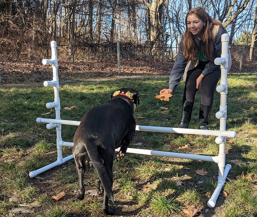Katie Greiner encourages her dog Stella to jump over the hurdle that she installed at the Milton Dog Park.