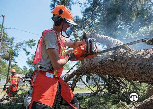A chainsaw can help protect your home and family from falling tree limbs before a storm and clean them up after one.