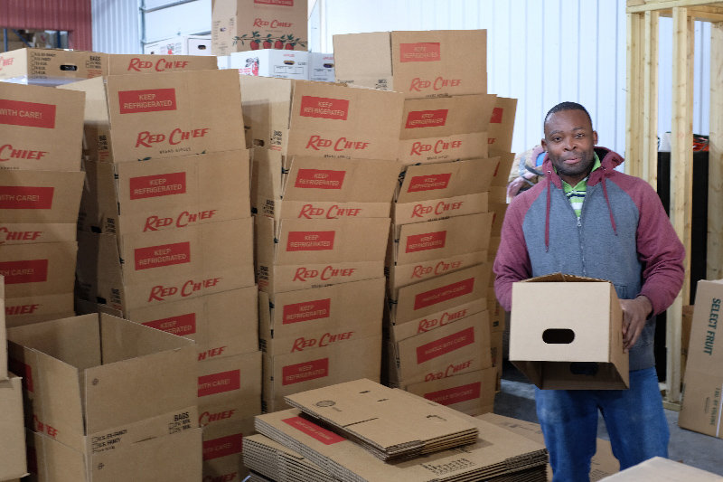 Ricardo Blake packs and stacks the apple boxes that are ready to be shipped.