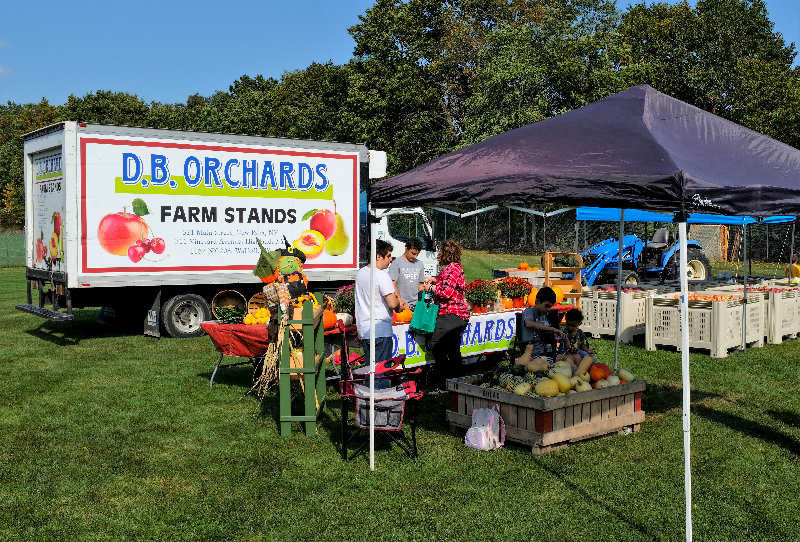 D.B Orchards provided fresh fruit and fall vegetables from their farm.