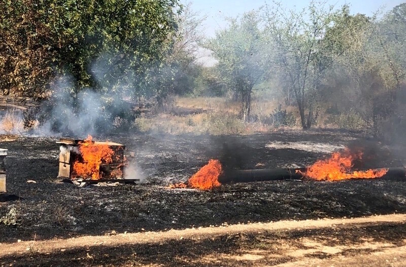 A beehive in flames at a honey farm in southern Israel near the Gaza Strip.