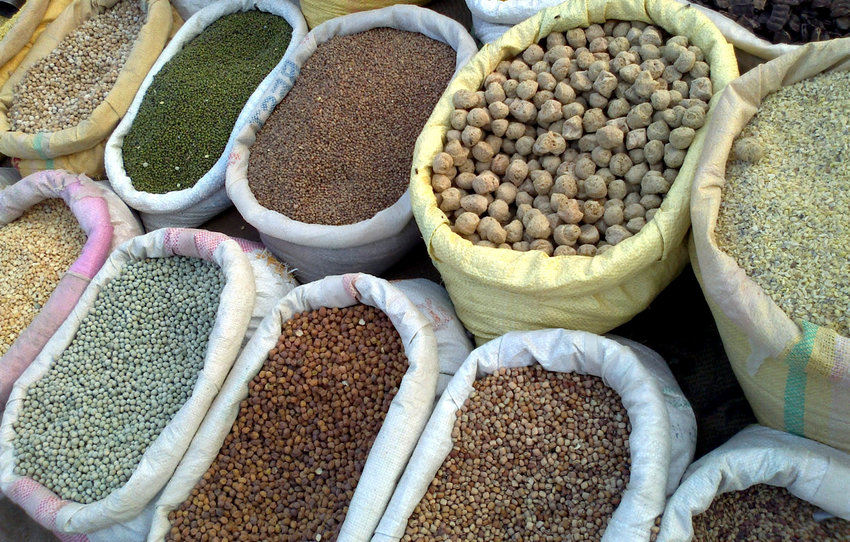 Grains are included in the traditional dairy dishes associated with the holiday of Shavuot.