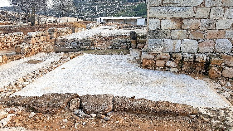Mosaic tile discovered at Tel Shiloh, February 2019.