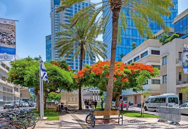 Rothschild Boulevard is one of Tel Aviv's most famous streets, and with good reason.