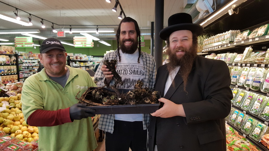 From right to left: Alexander Rapaport, co-founder of the Masbia Soup Kitchen, with Yisroel Bass, director of the Yiddish Farm, and an employee of Organic Circle, an all-kosher organic supermarket in Midwood, with organic horseradish for the seder.