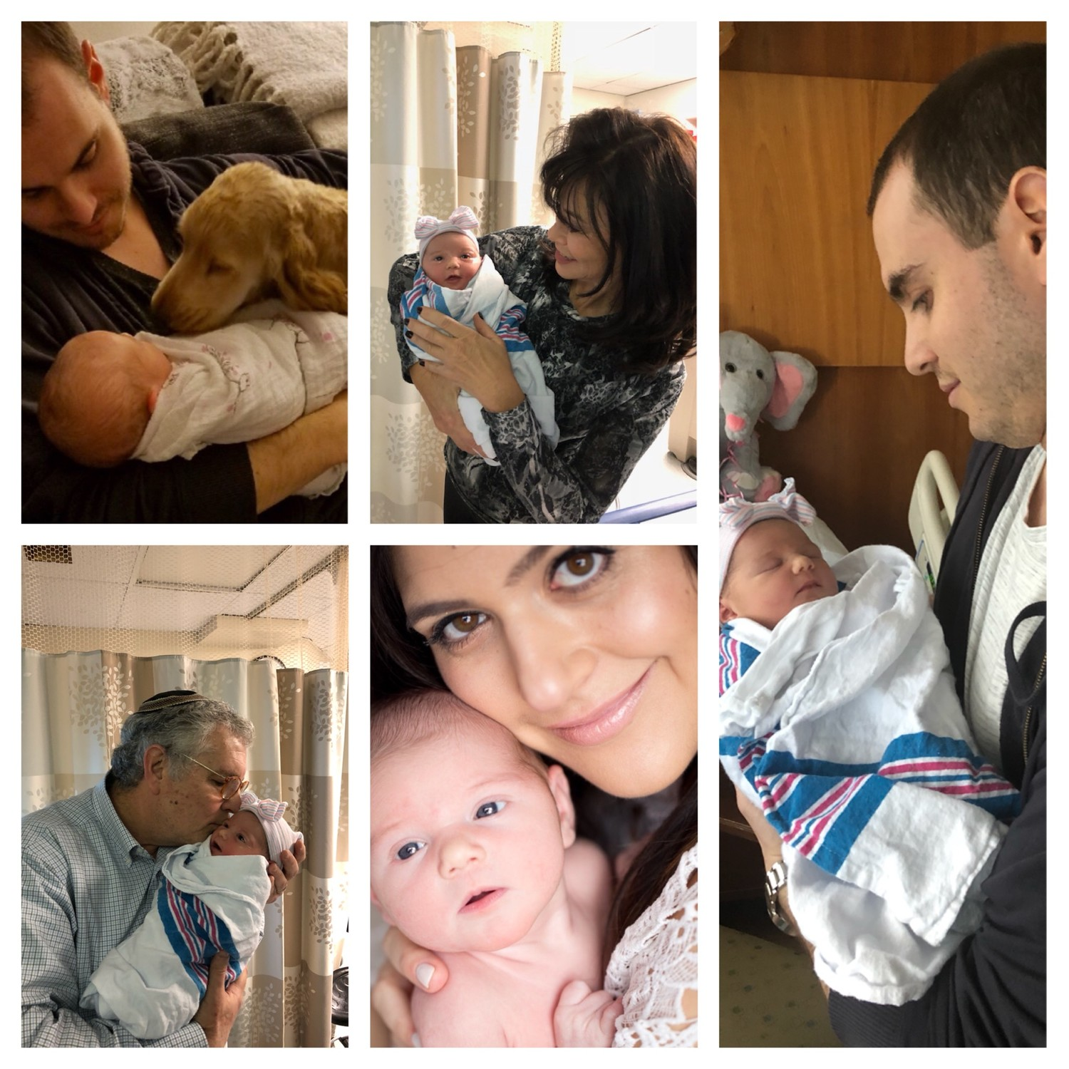 Clockwise from top left: Baby Arielle Emma (Rifka Miriam) with dad Jeremy and Penny, with Judy, with Jeremy, with Darya, and with saba David.