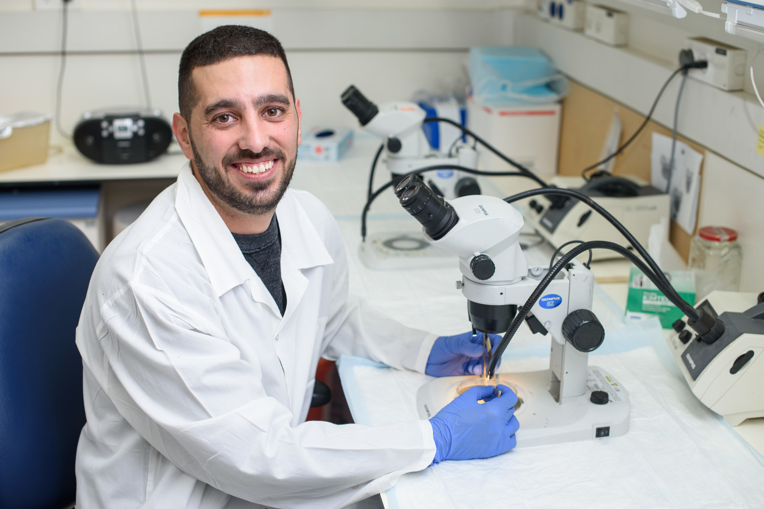 Doctoral student Amitai Mandelbaum is examining how abnormal microRNA behavior may contribute to the development of diabetes.