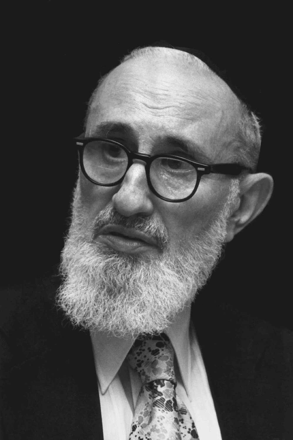 The Rav, Rabbi Soltoveitchik.