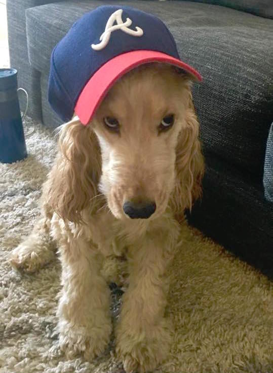Penny is, of course, a Braves fan.