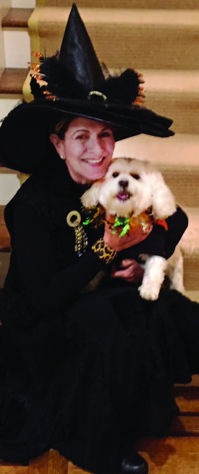 Presley, a rescue, belongs to Bobbie Andreozzi of Bristol