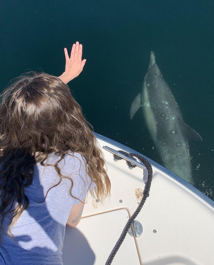 An unforgettable dolphin experience.