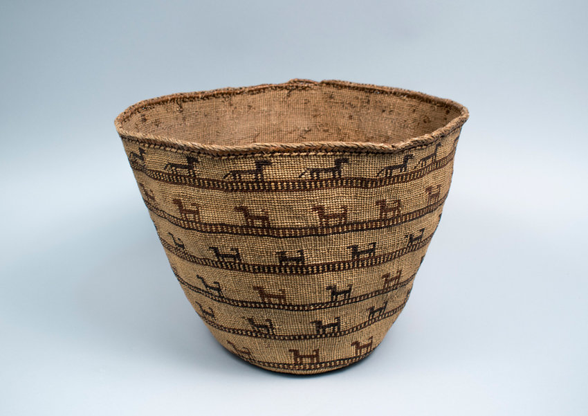 Skokomish cedar and reed basket, circa 1900, with wolves and dogs. The wolves have their tails down and the dogs have their tails up. This type of pliable basket was used for clothing or other soft items rather than food. In this region, remains of domesticated dogs date as far back as 1,000 BCE. Museum of History and Industry, 1957.1239.6