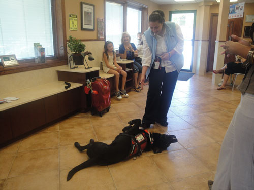Nadine Darsanlal had her service dog Harvey do some tricks at Central Veterinary Associates of Valley Stream on June 30.