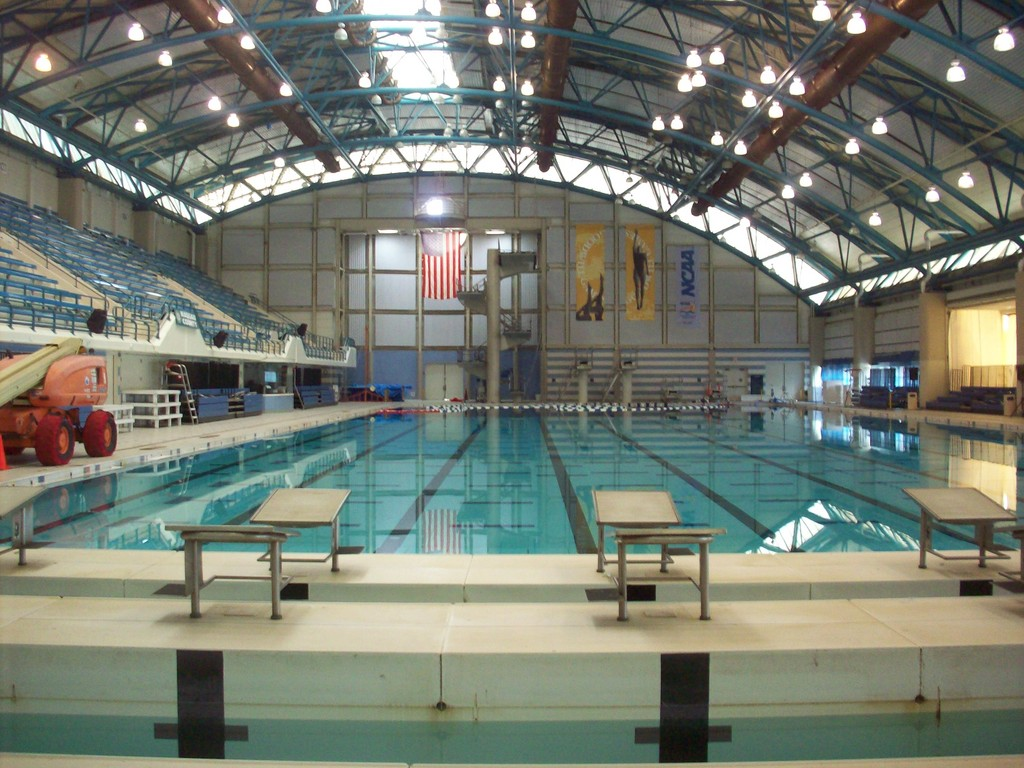 A plan is in the works for a major renovation of the Nassau County Aquatic Center in Eisenhower Park.